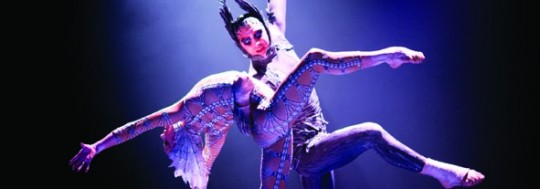 Cirque du Soleil Marketing Chief: Digital will Help us Make Customer Experiences more Intimate